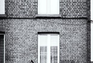 Quartier St Léonard (Liège)