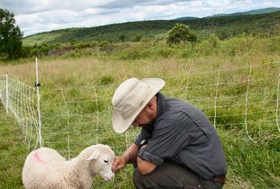 Farmer James nuzzles one of his lambs.