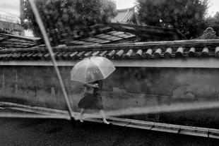 Umbrella.  Kyoto, Japan.  2015.
