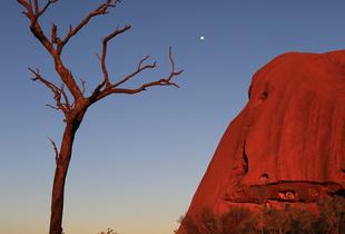 Scared Uluru