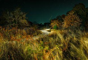 Grassland Field Road, Stars and Streaks, Shadowman