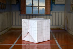 "CUBE, 14""x 21"", Digital Pigment Print, 2009 © Bill O'Donnell"
