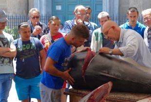 The Tuna Butchers of Palermo