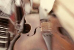 still-life Musical instruments