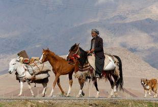 Kurdish tribes
