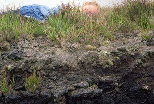 Peat Bog, Achill Island. IRE
