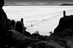 Bolivian Salt Desert