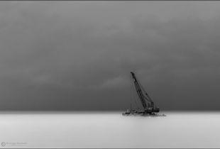 The Dream of a Crane