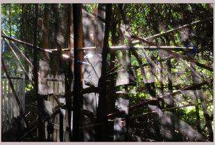 afternoonlight#ottawa#Canada