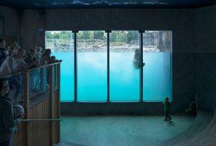 Diergaarde Blijdorp (Rotterdam Zoo), Netherlands (2016)