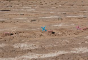 pauper's cemetery, burial site for unidentified migrants,Holtville, California