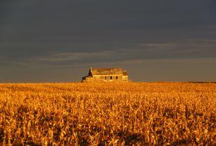 Prairie Prayer