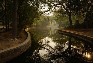 Lodhi by dawn