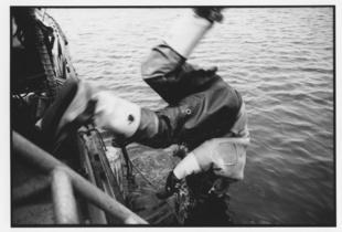 Hardhat diving