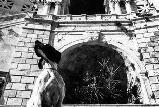 Il guardiano del Bastione