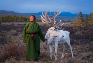 Saintsetseg Jambaldorj, a member of the Tsaatan ethnic minority, poses with a reindeer. The Tsaatan people are one of the last remaining groups of nomadic reindeer herders in Mongolia. They seasonally migrate within the forests of the Taiga region in order to care for their majestic animals. © Madoka Ikegami. Finalist, LensCulture Portrait Awards 2016