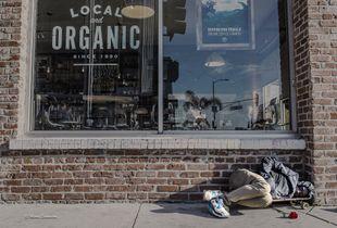Local Organic