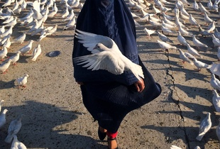 "A woman covered by a burqha (traditional Afghan wear) passes by the ""Roze Sharif"" holy shrine. This place is home to countless white pigeons; the pigeon being the symbol of freedom in Afghanistan. Mazar-e-Sharif, May 2015."