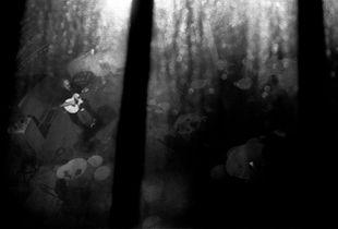 Umbria Jazz Winter 2006/2007_Chip Wilson