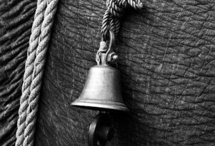 The Elephant Bell