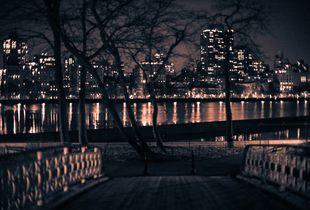 Central Park VIII
