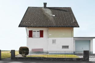 Dornbirn Houses #1 / 2013