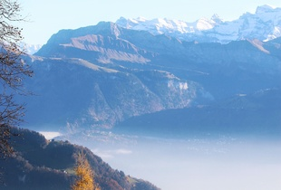 Autumn meets winter. .Rig, Switzerland - No Filters needed