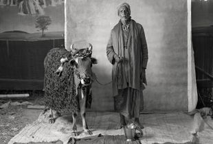 MARGINAL TRADES © Supranav Dash