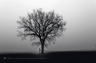 1st Season: Love of the Earth. Grand Prize Winner, Pierre Gable, France. Image courtesy Hamdan International Photography Award. © Pierre Gable