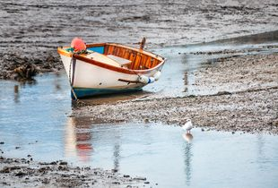 Awaiting An Incoming Tide