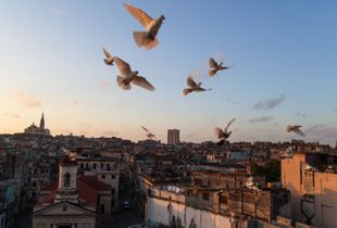Havana Twilight