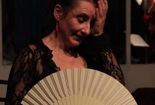 Flamenco.Tian Qi,  Milano, Italy, May 2014