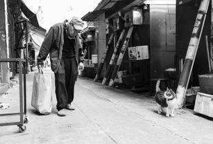 old man and cat