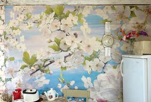 Dreaming walls # 4