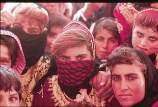 Syria nomads