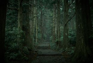 The entrance of Kumano Nachi shrine