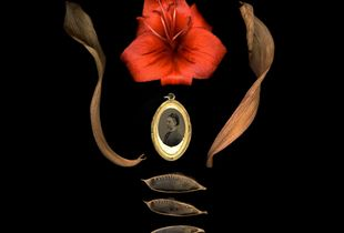 Amulet with lily, dried tulip leaves, and baptista seed pods.