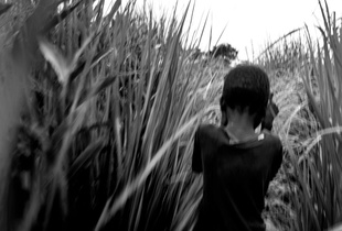 (Prov. of Katanga - RDC)