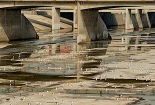 LA. River #45