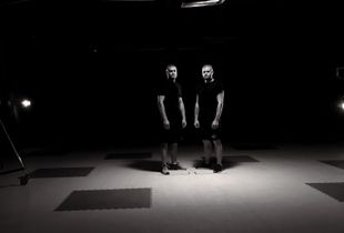 Through the looking-glass, a portrait of twin boxers