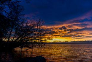 Levé de soleil hivernal sur le lac de Morat à Nant/Suisse