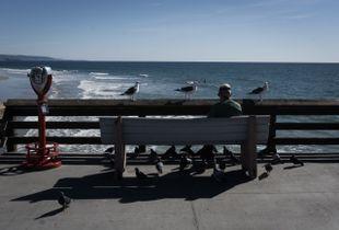 A man among birds