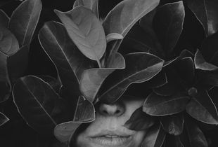 Leaf portrait No. 3