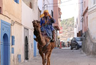 Taghazout Camel rider