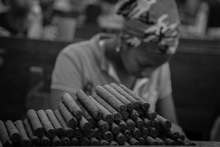 Cuba. Tobacco's industry