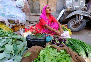 Street life, Jodhpur, Rajasthan
