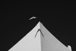 Flight at Dalí's House