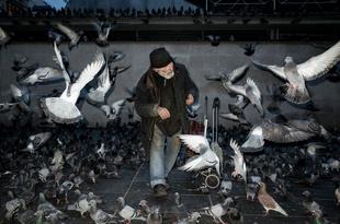 Birdman, Paris 2016