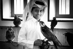 'Falconboy'