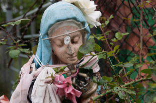 Lady and the Rose - Ogulla Shrine, Co Roscommon